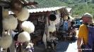 ElbrusRace-2102JG_UPLOAD_IMAGENAME_SEPARATOR16